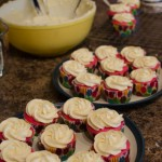 RainbowCupcakes-10